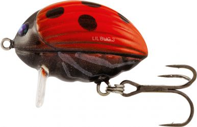Salmo-Lil'Bug-Lady Bird 2F