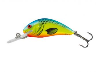 Salmo - Hornet 3 F - CHARTREUSE BLUE