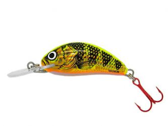 Salmo - Hornet 2cm S - GOLD FLUO PERCH